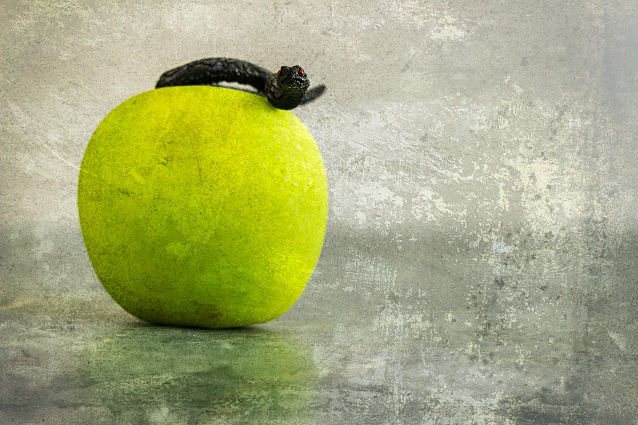 Apfel und Schlange
