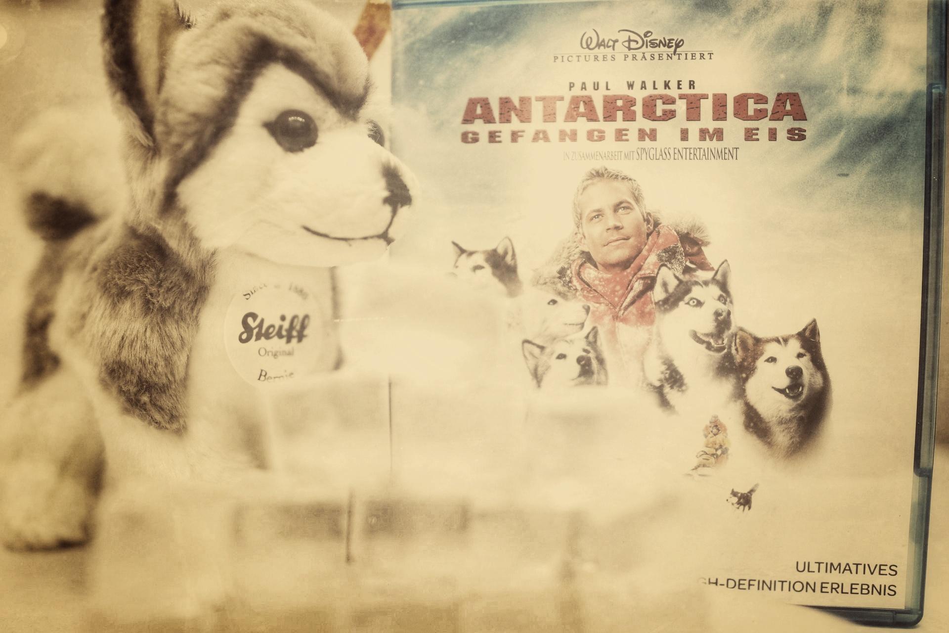 Antarctica Blu-Ray